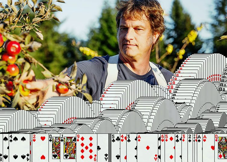 Wes Cherry, the developer of the first Microsoft Klondike Solitaire game, working on his apple farm